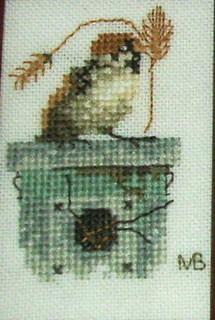 FOTKA - Vrabec-křížková výšivka