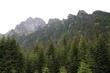 hory nezklamou