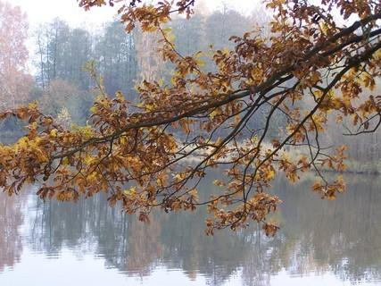 FOTKA - Podzimní ,,