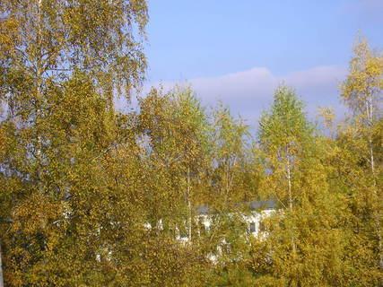 FOTKA - Pohled z bytu,