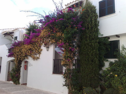 FOTKA - Aparthotel Club Menorca