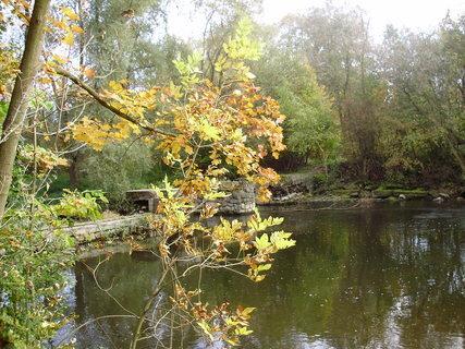 FOTKA - Podzimní procházka okolo řeky,,,
