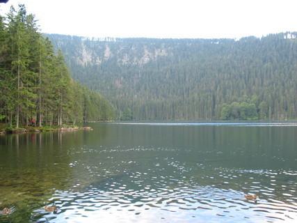 FOTKA - Jezero