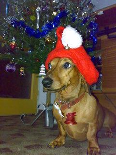 FOTKA - Vánoční dáreček