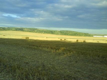 FOTKA - Krajinka