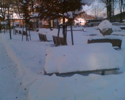 FOTKA - Zima 002
