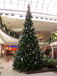 FOTKA - vánoční stromek v obchodě