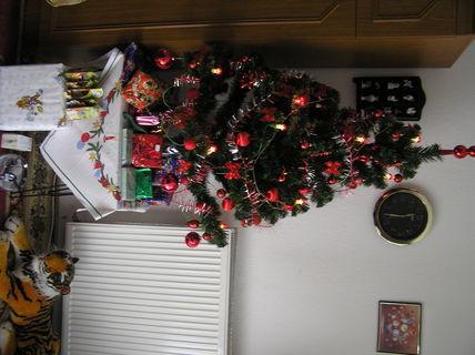FOTKA - Vianočný stromček