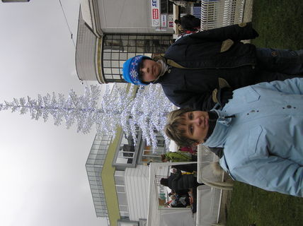 FOTKA - Biely stromček
