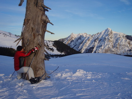 FOTKA - Lyžovačka - pozor strom