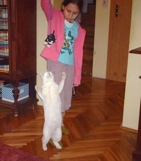 FOTKA - Kocour mého bratra - 9.10.2009.