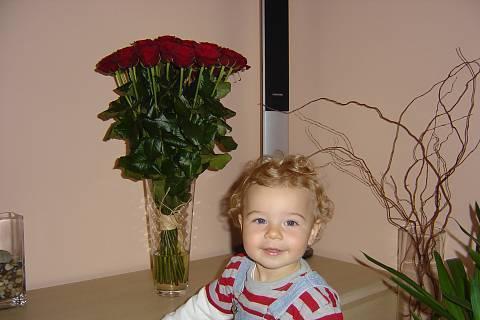 FOTKA - Třicet růží