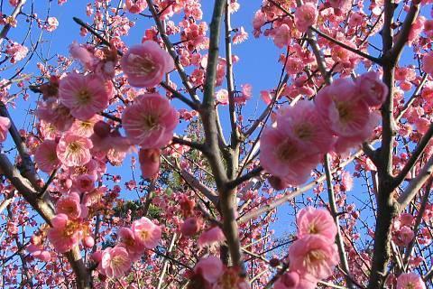 FOTKA - trochu jara