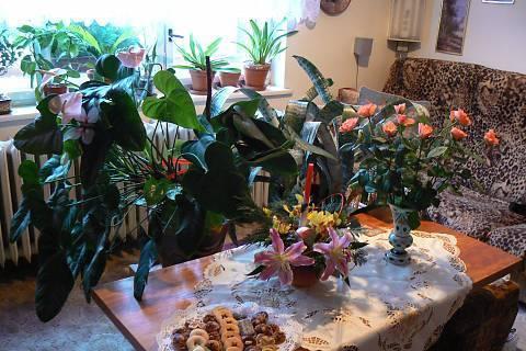 FOTKA - vánoční stůl v obýváku