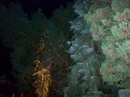 FOTKA - noční procházka