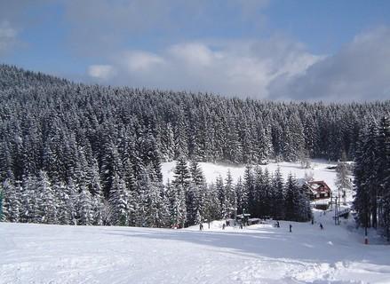 FOTKA - **zima**