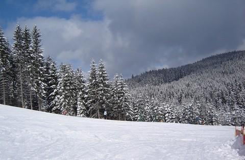 FOTKA - +zima+
