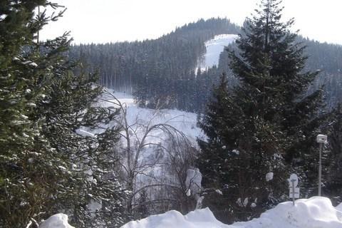 FOTKA - Velk� Karlovice..