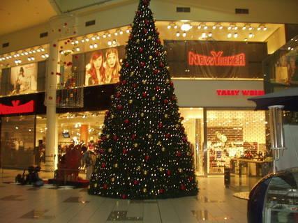 FOTKA - Krásný vánoční strom