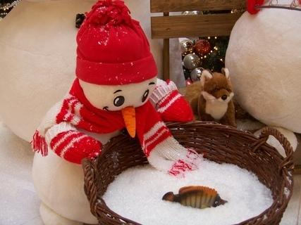 FOTKA - vánoční výzdoba Arkády Praha ........................