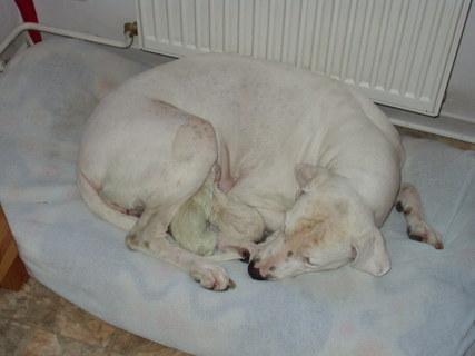 FOTKA - Maminka a miminka 2