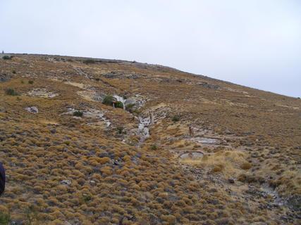 FOTKA - Zkamenělý les 2