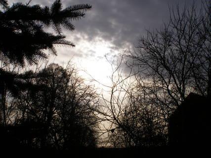 FOTKA - Ráno*