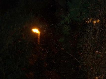 FOTKA - noční focení.........