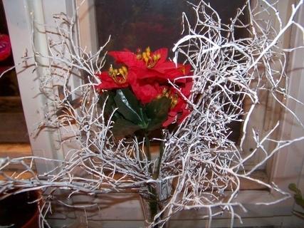 FOTKA - vánoce na okně....
