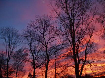 FOTKA - krásné barvy na obloze