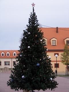 FOTKA - vánoční stromek Kunratice
