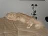 Tady spím taky rád
