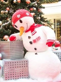 FOTKA - kuk do vánoční pošty...