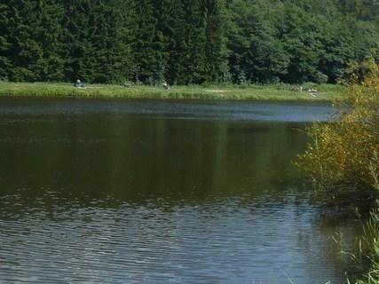 FOTKA - rybník na Moravě