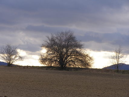 FOTKA - horizont*