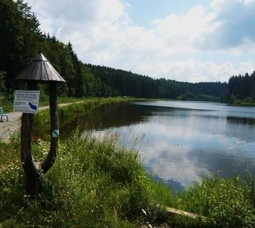 FOTKA - rybník.