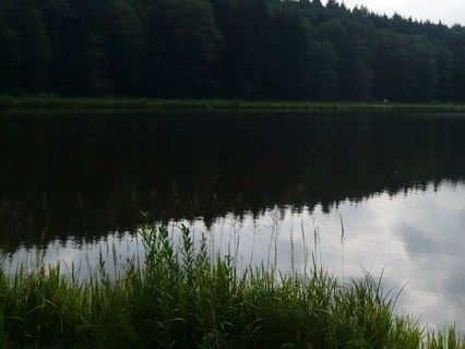 FOTKA - u rybníka...