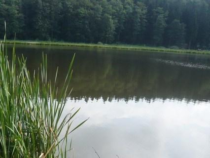FOTKA - u rybníka......