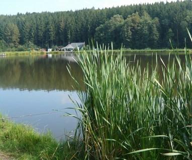 FOTKA - u rybníka........