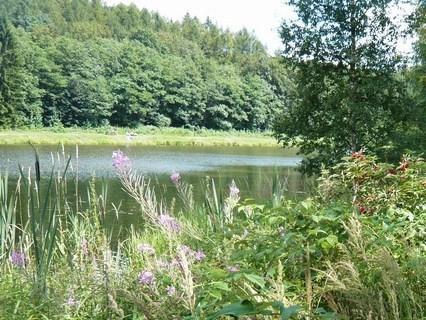 FOTKA - u rybníka.........