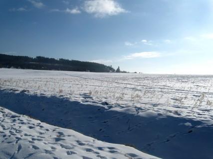 FOTKA - Zasněžené pole