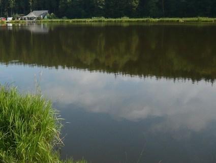 FOTKA - u vody-----