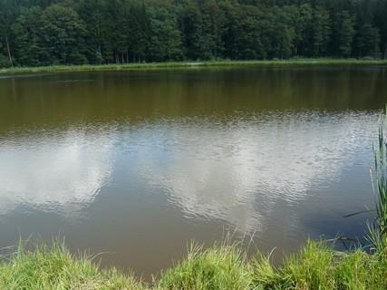 FOTKA - u vody------