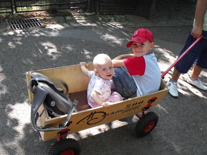 FOTKA - v létě v zoo Liberec