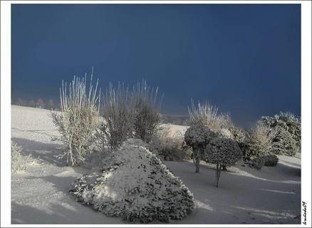 FOTKA - zimní zátiší
