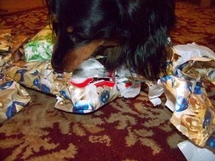 FOTKA - v tom dárku byla bonboníéra...