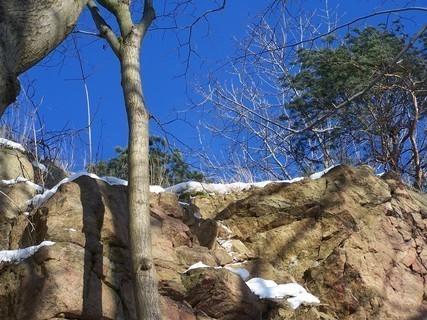 FOTKA - Prosinec ve skalách