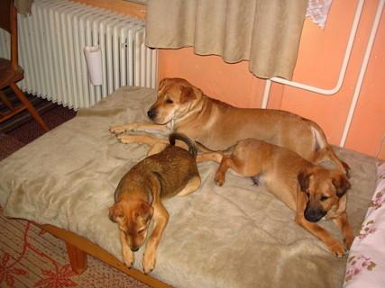 FOTKA - Sára s rodinkou