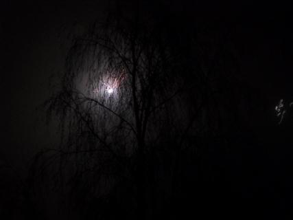 FOTKA - Ohňostroj - ještě jedna, poslední