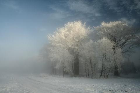 FOTKA - Zimní sen